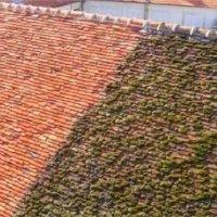 démoussage toit 95 | Couvreur taicom 95
