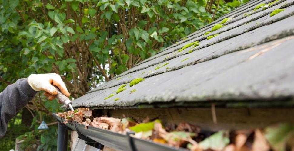 démoussage nettoyage toiture 95 - couvreur Taicom 95