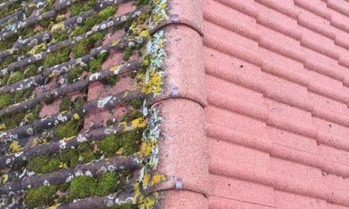 Couvreur 95 | Traitement toiture demoussage